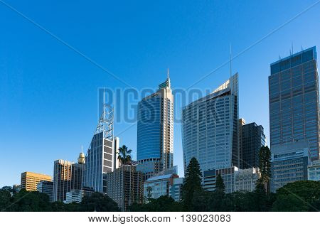 Sydney Central Business District skyline viewed from the Domain. Downtown skyscrapers of Sydney city with copy space. New South Wales Australia