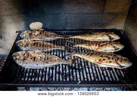 Preparing Fish on the charcoal grill. Home barbecue picnic with sea bream