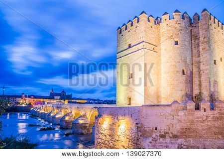 Roman monument bridge illuminated at night in Cordoba - Andalusia Spain