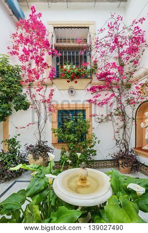Cordoba, Spain - 10 May, 2016: Traditional garden decorated with  flowers during the festival of May in Cordoba, Andalusia, Spain