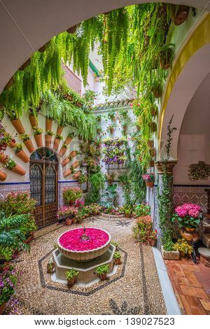Cordoba, Spain - 10 May, 2016: Traditional garden decorated with  flowers during the festival of May in Cordoba, Andalusia Spain