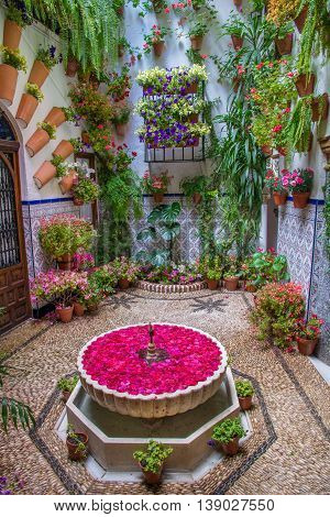 Cordoba, Spain - 10 May, 2016: Traditional garden decorated with  flowers during the festival of May, in Cordoba, Andalusia - Spain