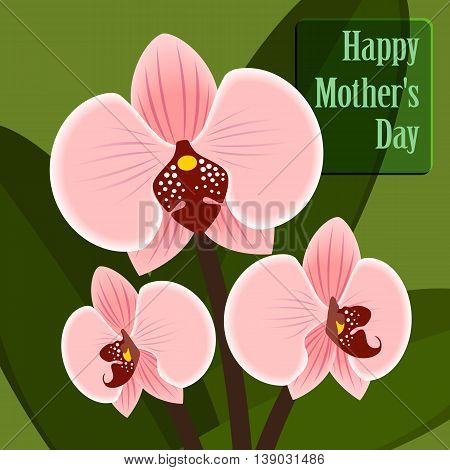 Happy Mothers's Day. Card with orchid. Grouped for easy editing. Perfect for invitations or announcements.