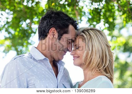 Romantic mid adult couple against trees on sunny day