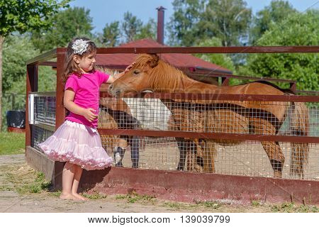 outdoor portrait of young smiling child girl feeding horse on farm