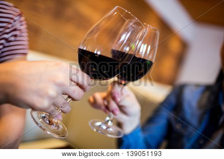 Cropped image of female friends toasting wineglass