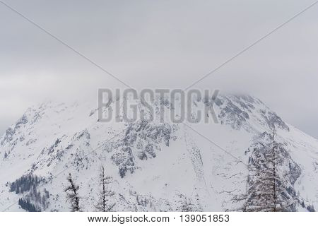 deep wintry mountain has shrouded its peak in fog - austria