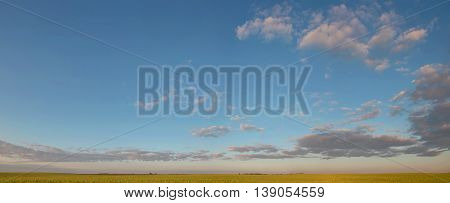 Beautiful Landscape Of Wheat Field, Road On The Background Of Stunning Blue Sky With Amazing Cumulus