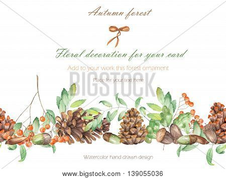 Background, template postcard, forest ornament with the watercolor forest plants (oak acorns, fir cones, rowan tree), hand drawn on a white background, greeting card, decoration postcard or invitation