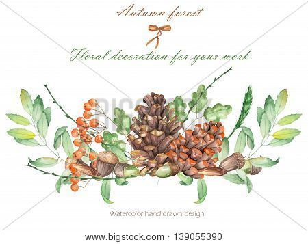 An illustration isolated with the floral watercolor forest elements (oak acorns, cones, rowan) on a white background