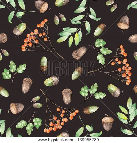 A seamless pattern with a floral ornament of the watercolor forest elements (oak acorns, rowan and branches) on a dark background