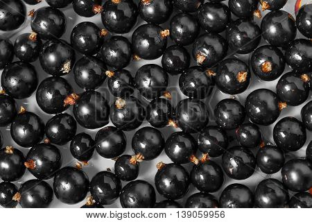 Summer Ripe Berry black currant closeup background