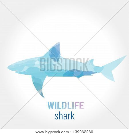 Wildlife banner on white background. Colored watercolor silhouette shark. Poster for pisciculture, journey, park culture.