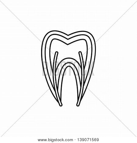 Tooth cross section icon in outline style isolated vector illustration