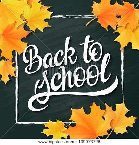 vector hand lettering greeting text - back to school - with chalk frame and realistic maple leafs on blackboard background.