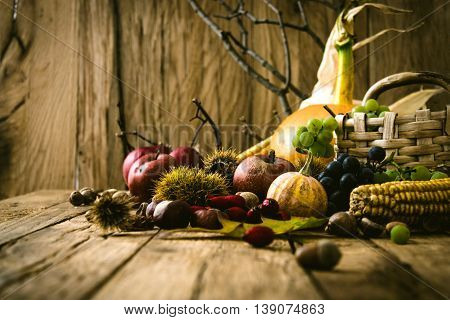 Autumn fruit background. Autumn Thanksgiving seasonal fruit. Nature background