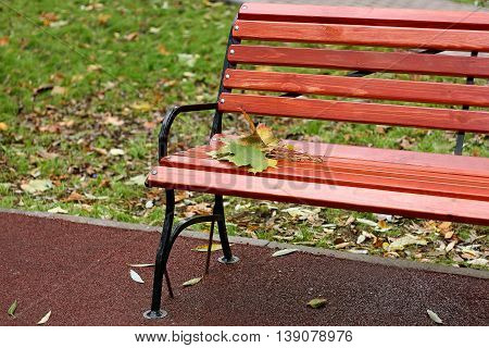 Autumn urban landscape. Part of the wooden benches in the Park on which lay a small bouquet of autumn maple leaves.