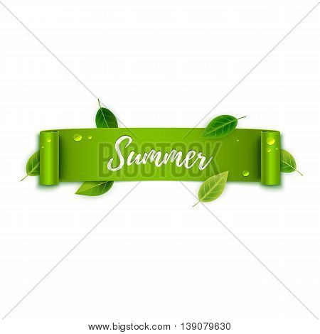 Summer Text On Green Ribbon With Leaves, Vector Illustration