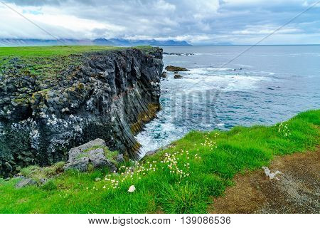 Bird cliffs at the seaside near Arnarstapi Village in Snaefellsnes Penisula Iceland in summer