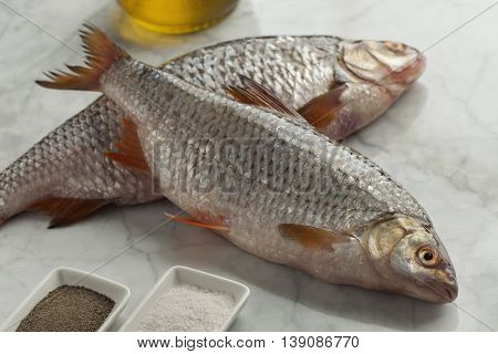 Fresh raw common roach fishes