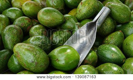 Avocado. Stack of delicious green fresh vegetables with metal scoop lying on them.. Photographed avocados from above.