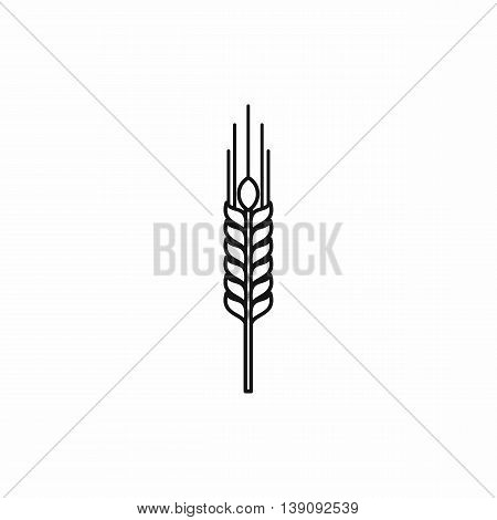 Stalk of ripe barley icon in outline style isolated vector illustration