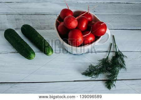 Vegetables on a white background red radish in a white ceramic mug cucumbers radishes and dill on a light background.
