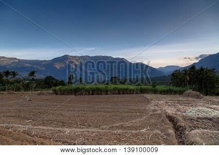 View of the Western Ghats from a sugarcane farm in Marayoor village near Munnar, Kerala, India