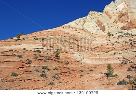 Red rock formations of Zion National Park, Utah
