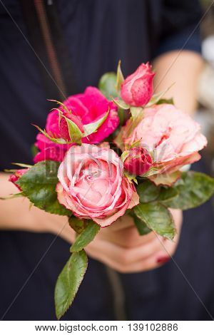 Closeup of a beautiful bouquet of pink roses in woman's hands. Dark background. Fresh flowers as a present from a garden.