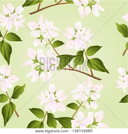 Seamless texture branches decorative shrub with white flowers nature background vector illustration