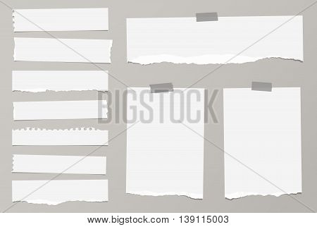 Pieces of ripped white blank notebook paper are stuck with sticky tape on gray background.