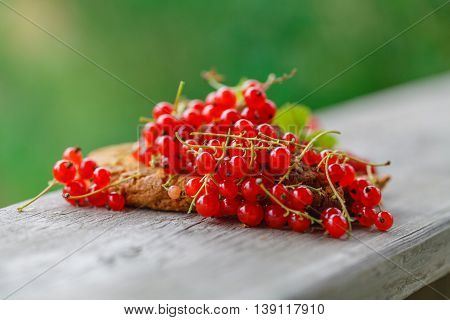 Ripe Red Currant On The Wooden Background