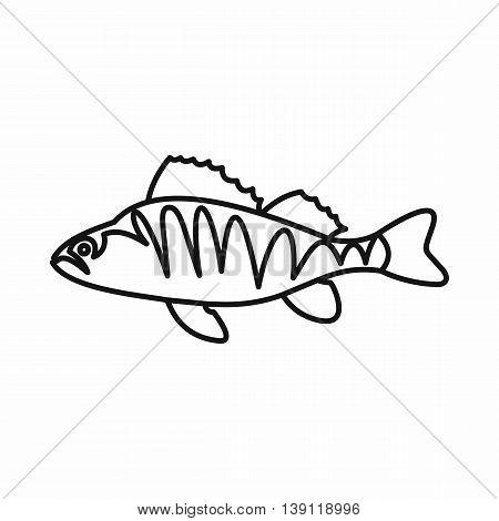 European perch, Perca fluviatilis icon in outline style isolated vector illustration