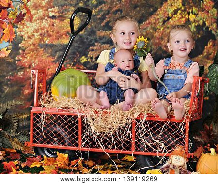 Two preschool sisters happily sitting in a hay-lined work wagon with their newborn baby brother.  They're surrounded by colorful fall foliage.