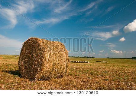 Rural landscape. Hay bales on the field after harvest