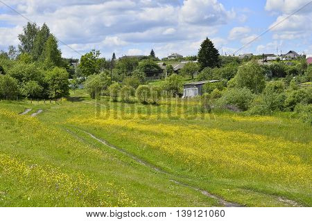 Rural landscape with road and houses flowering meadow