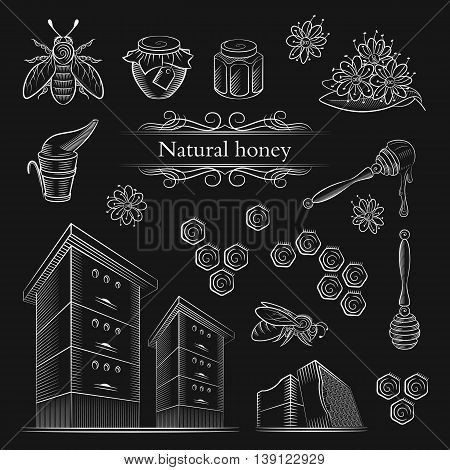 Hand-drawn icons bees and honey. Label honey spoon beehives and flowers. Honey icons in vintage style. Vector illustration.