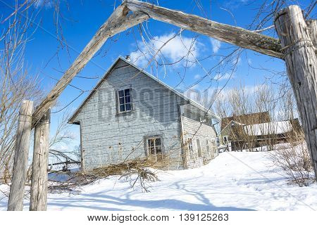 An Old barn in winter season with tree