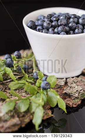 Blueberry in white bowl on bark with moss, stay on the mirror