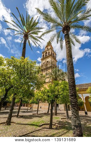 The bell tower Alminar and former minaret, also known as the courtyard of orange trees, of Mosque of Cordoba converted to a Cathedral in the 1500 in Andalusia, Spain.