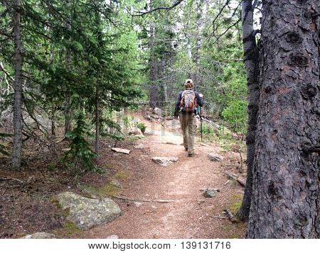 A young male hiker walks through a pine and aspen forest along Barr trail on Pikes Peak Mountain in Colorado Springs Colorado USA
