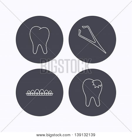 Dental braces, fillings and tooth icons. Tweezers linear sign. Flat icons in circle buttons on white background. Vector