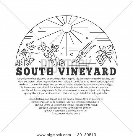 Winemaking, wine tasting flyer, poster with winery symbols in circle and with place for your text. raster template with winery graphic design elements in mono line style isolated on a white background