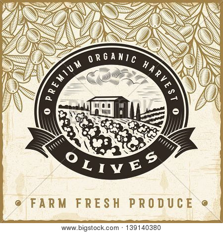 Vintage olive harvest label