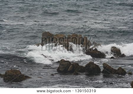 View of Pacific Ocean off the coast of Pacific Grove, California with blue grey water and waves of white foam splashing on dark brown rocks