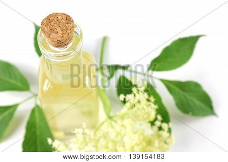 Sambucus nigra elderberry sirup on white background. Bottle of excellent syrup with flowers and leaves.