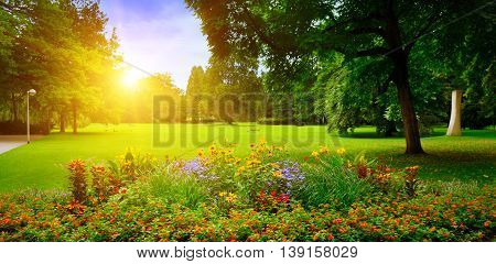summer park with beautiful flowerbeds and lawn