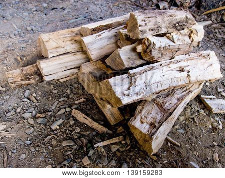 Pile of firewood. Renewable resource of a energy
