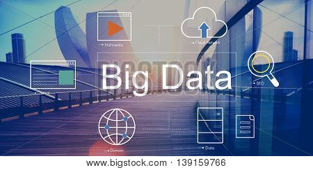Big Data Domain Web Page SEO Concept